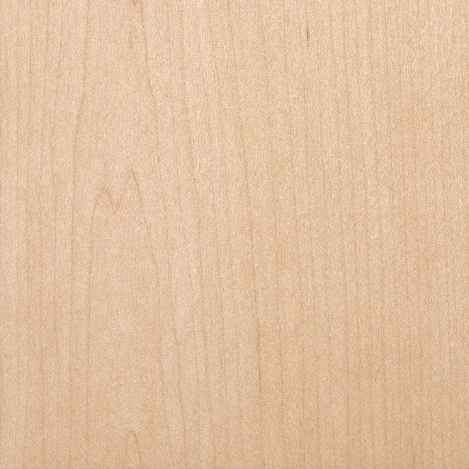 White maple trustile doors